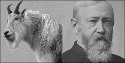 President Benjamin Harrison and his pet goat