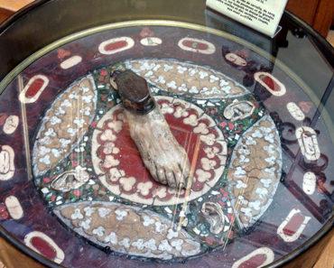 Table at Musée d'Histoire de la Médecine in Paris. Photo © Marc Hartzman.