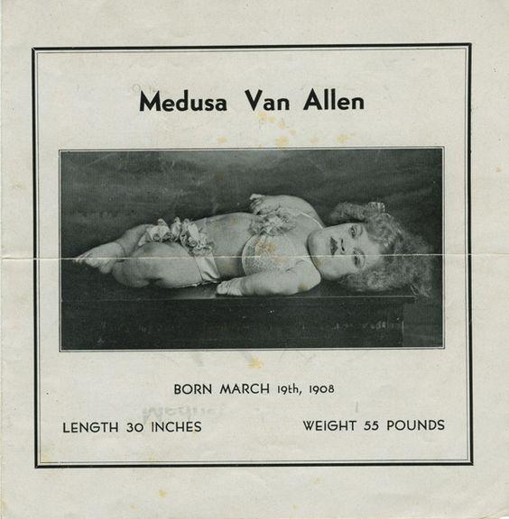 A pitchbook sold by Medusa Van Allen.
