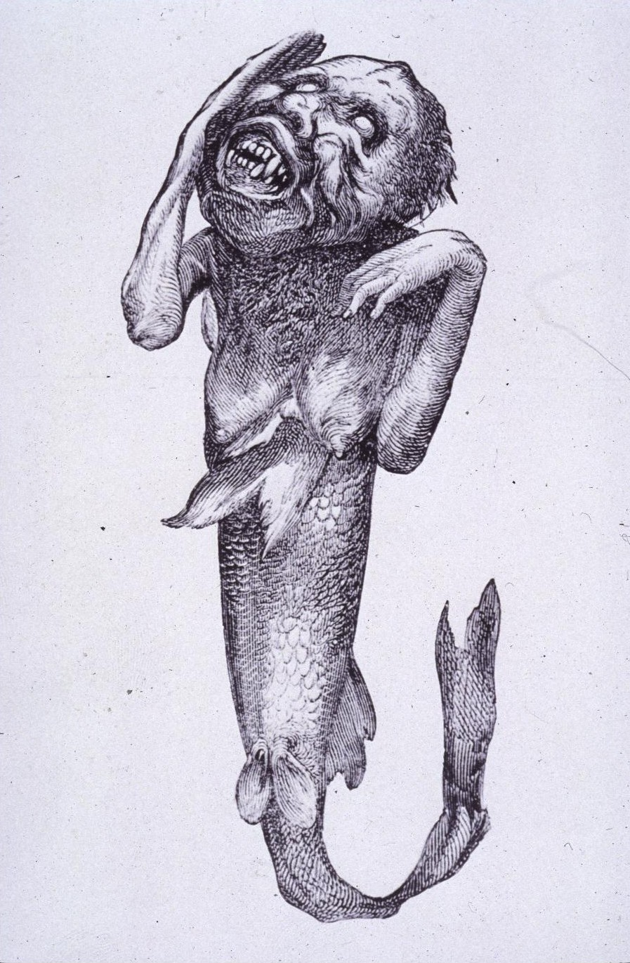The Feejee Mermaid was exhibited in 1842. By P. T. Barnum (P. T. Barnum) [Public domain], via Wikimedia Commons