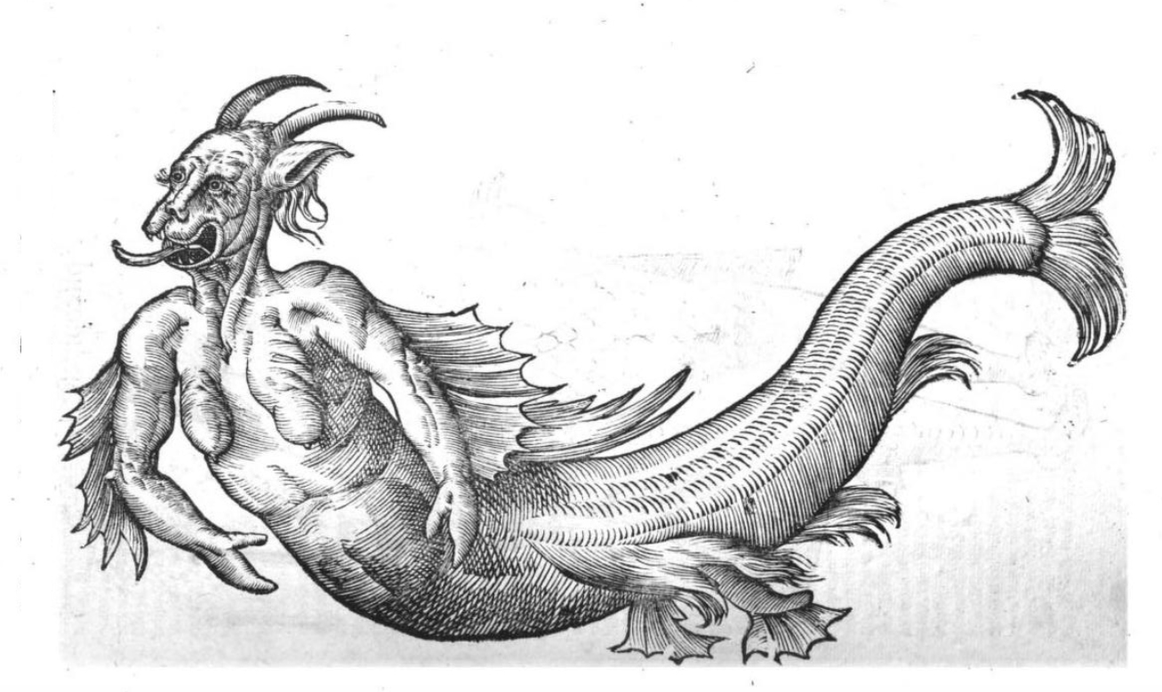 Not exactly Daryl Hannah. Mermaid illustration from Monstrorum Historia (1642) by Vlyssis Aldrouandi.