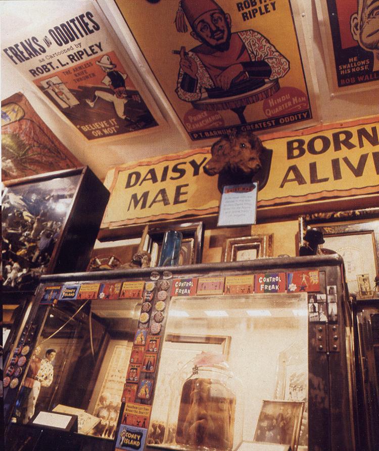 Inside Johnny Fox's Freakatorium. Photo by Liz Steger-Hartzman.