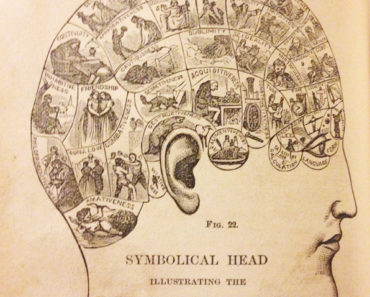 A phrenology head from How to Read Character, 1876.